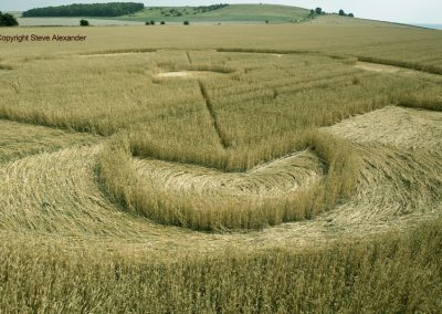 Nursteed Farm, nr Devizes, Wilts   17th August 2016   Wheat CL