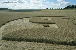 Cooks Plantation, nr Beckhampton, Wilts   27th August 2016   Wheat Low8