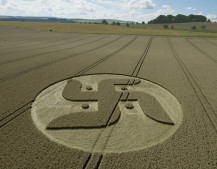 Cooks Plantation, nr Beckhampton, Wilts   27th August 2016   Wheat L4