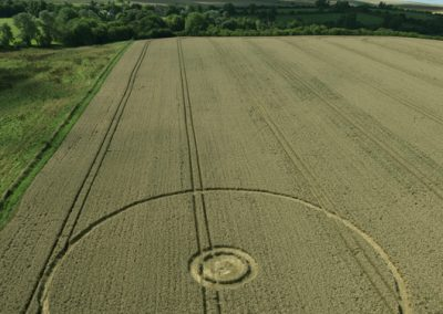 Overton Hill, nr East Kennett, Wilts   27th August 2016   Wheat L