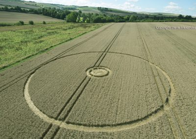 Overton Hill, nr East Kennett, Wilts   27th August 2016   Wheat L2