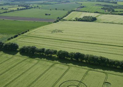 Broad Hinton (2), Wilts | 28th May 2017 | Barley | L3