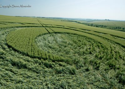 Longwood Warren, Hants | 17th June 2017 | Wheat | Low2