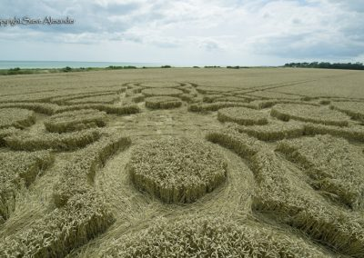 Climbing Beach, W. Sussex | 19th July 2017 | Wheat |Low7