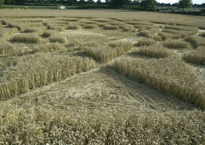 Bydemill Copse, Cannington, Wilts | 4th Aug 2017 | Wheat | Low8