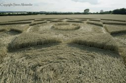 The Rollright Stones, Oxon | 5th August 2017 | Wheat | Low3