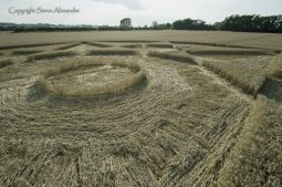 The Rollright Stones, Oxon | 5th August 2017 | Wheat | Low5