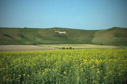 The Pewsey Vale