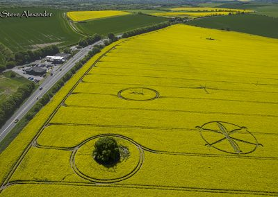 Willoughby Hedge, Wilts | 8th May 2018 | Oilseed Rape | L6