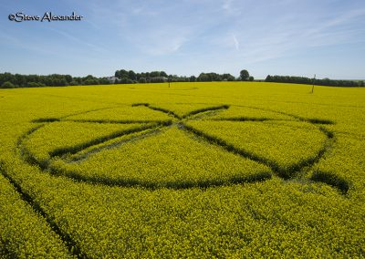 Willoughby Hedge, Wilts | 8th May 2018 | Oilseed Rape | Low