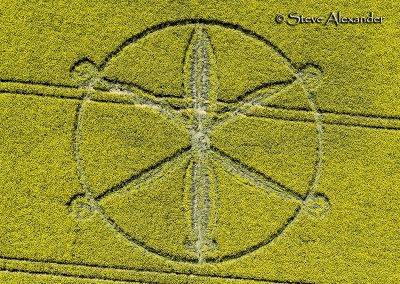 Willoughby Hedge, Wilts | 8th May 2018 | Oilseed Rape | OH2