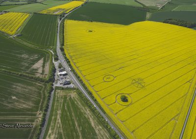 Willoughby Hedge, Wilts | 8th May 2018 | Oilseed Rape | LL