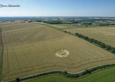 Longwood Warren, Hants | 10th July 2018 | Long-eared Wheat L3