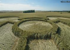 Coneybury Henge, Wilts   8th July 2018   Wheat Low5