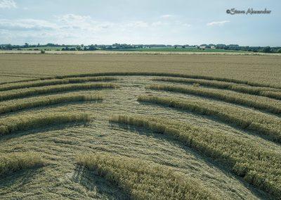 Winterbourne Bassett, Wilts | 14th July 2018 | Wheat Low4