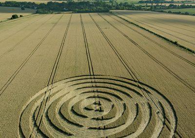 Winterbourne Bassett, Wilts | 14th July 2018 | Wheat L