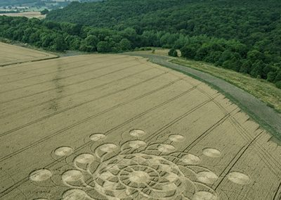 Muncombe Hill, Somerset | 14th July 2018| Wheat  DULL