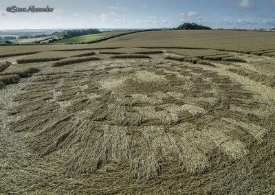 Hackpen Hill (3), Wilts | 30th July 2018 | Wheat Low5