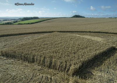 Hackpen Hill (3), Wilts | 30th July 2018 | Wheat Low7