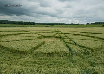 Owslebury, Hants | 11th June 2019 | Barley | LOSF3