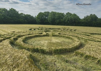Sparticles Wood, nr Netherne-on-the-Hill Surrey | 21st June 2019 | Barley | GRD