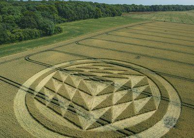 Fulley Wood, nr Tichborne, Hants   16th July 2019   Wheat   L5