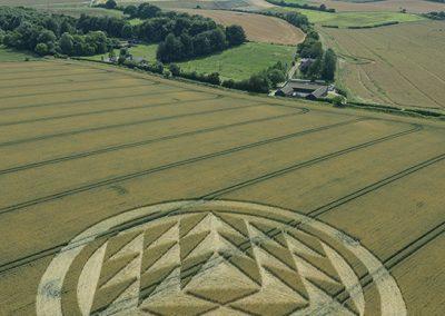 Fulley Wood, nr Tichborne, Hants   16th July 2019   Wheat   L6