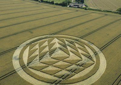 Fulley Wood, nr Tichborne, Hants   16th July 2019   Wheat   L7