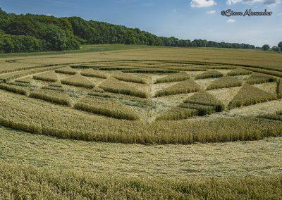 Fulley Wood, nr Tichborne, Hants   16th July 2019   Wheat   Low