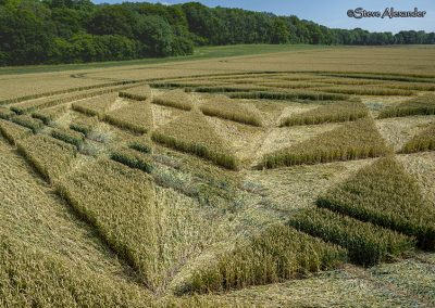 Fulley Wood, nr Tichborne, Hants   16th July 2019   Wheat   Low2
