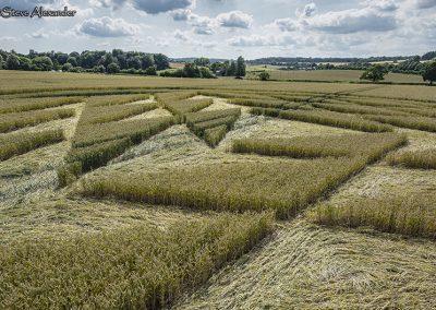 Fulley Wood, nr Tichborne, Hants   16th July 2019   Wheat   Low5