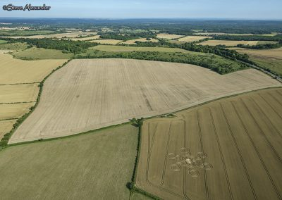 Pepperbox Hill, West Grimstead, Wilts   23rd July 2019   Wheat   PBHCC