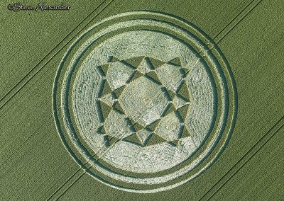 Danebury Hillfort, Hants | 1st July 2019 | Wheat | OH