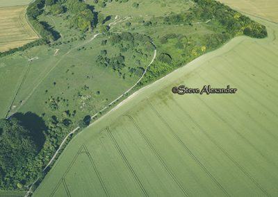 Danebury Hillfort, Hants | 1st July 2019 | Wheat | L3