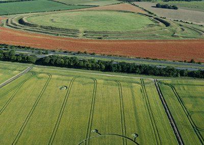 Yarnbury Castle Hillfort, Wilts   3rd July 2019   Barley   L