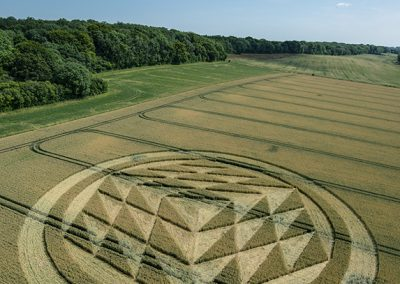 Fulley Wood, nr Tichborne, Hants   16th July 2019   Wheat   L