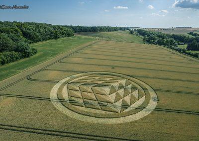 Fulley Wood, nr Tichborne, Hants   16th July 2019   Wheat   L3