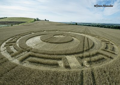 Etchilhampton, Wilts | 20th August 2019 | Wheat | L2