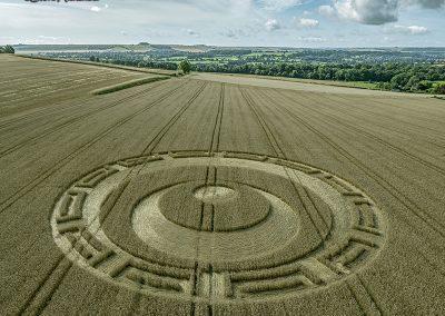 Etchilhampton, Wilts | 20th August 2019 | Wheat | L3
