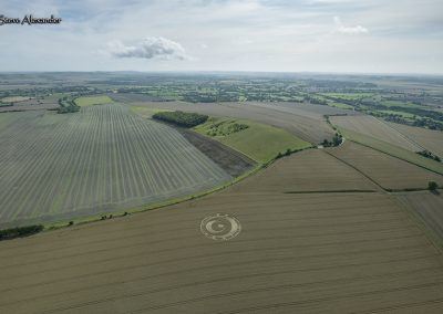 Etchilhampton, Wilts | 20th August 2019 | Wheat | H2