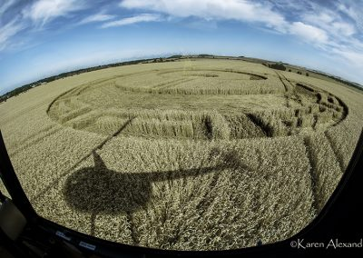 Etchilhampton, Wilts | 20th August 2019 | Wheat | Heli