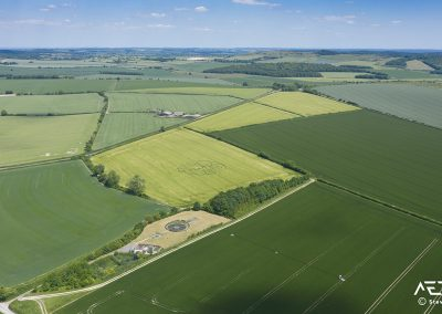 Sixpenny Handley, Dorset | 31st May 2020 | Barley | HL2