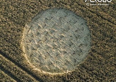 Luxenborough, nr. Stonehenge, Wilts | 16th July 2020 | Wheat |  CLSCT