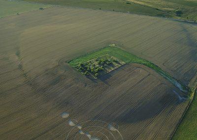 Luxenborough, nr. Stonehenge, Wilts | 16th July 2020 | Wheat |  LT