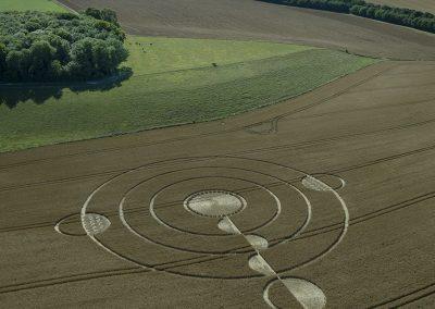 Luxenborough, nr. Stonehenge, Wilts | 16th July 2020 | Wheat | L2S