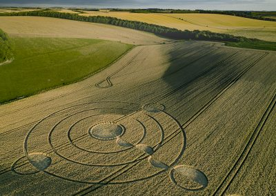 Luxenborough, nr. Stonehenge, Wilts | 16th July 2020 | Wheat |  L3T