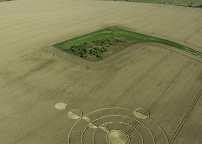 Luxenborough, nr. Stonehenge, Wilts | 16th July 2020 | Wheat | L3S