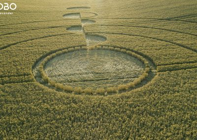 Luxenborough, nr. Stonehenge, Wilts | 16th July 2020 | Wheat |  LowT