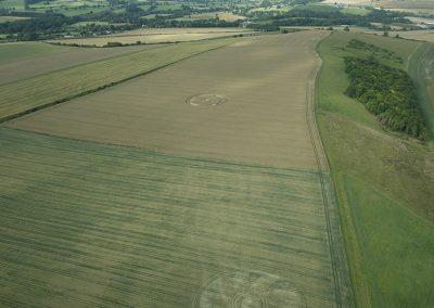 Etchilhampton (2), Wilts | 26th July 2020 | Wheat | L4