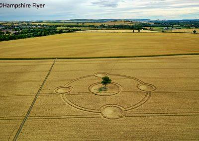 Potterne Field, nr Devizes, Wilts    4th Aug 2020   Wheat   L2